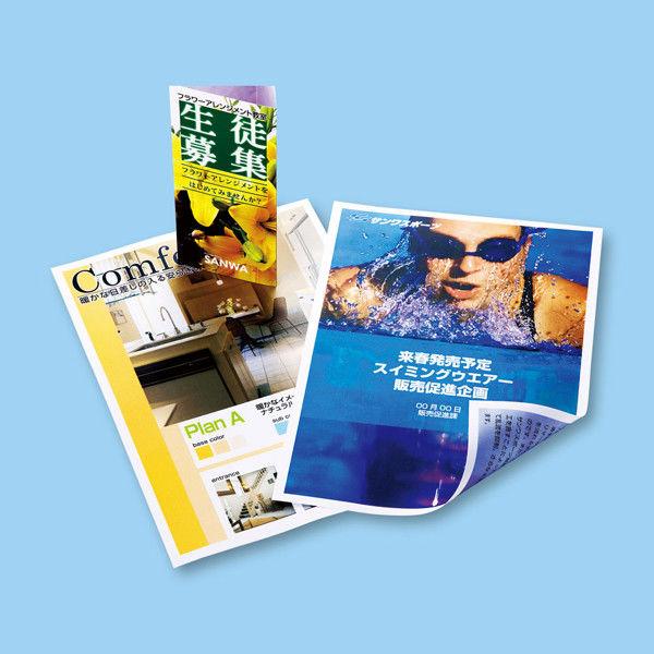 サンワサプライ カラーレーザー用半光沢紙・厚手 LBP-KCAGNA3N (直送品)