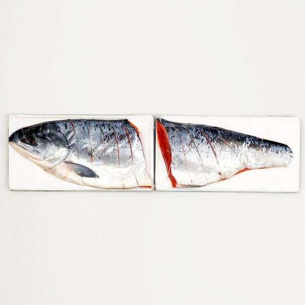 北海道銀毛 新巻鮭 半身姿切身