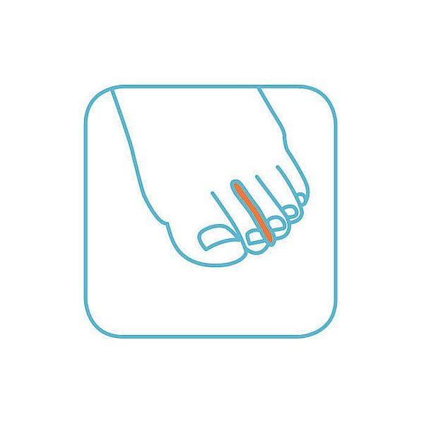 小原工業 セラステップ ゲルトゥセパレータ 2個入 6206 1セット(8個:2個×4組) 8-9049-13(直送品)