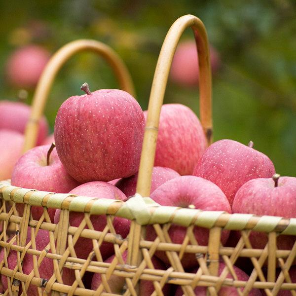 メッセージりんごとアップルジュース