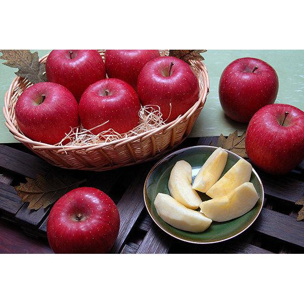 山形県産サンふじりんご2kg