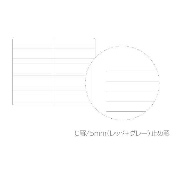 エトランジェ・ディ・コスタリカ カバーメモ[TRP]ブルー TRPー29ー08 10冊 (直送品)