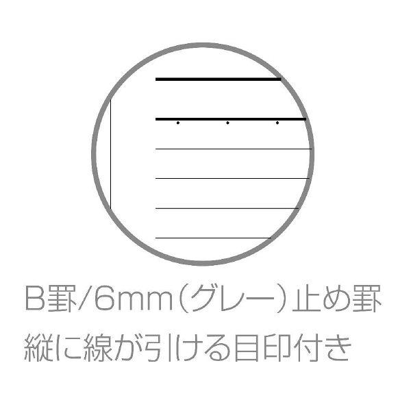 エトランジェ・ディ・コスタリカ B5ノート[FAKE]オレンジ FAKEー22ー03 10冊 (直送品)