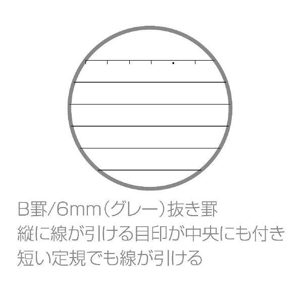 ノート B5 凱旋門 10冊(直送品)