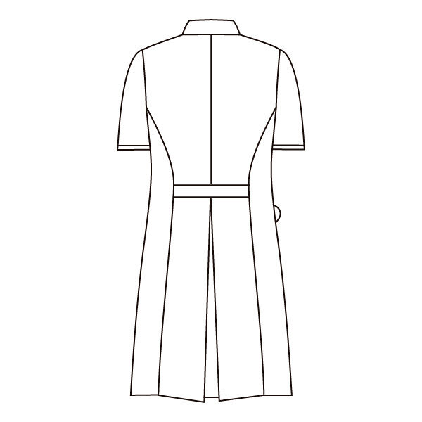 住商モンブラン ローラアシュレイ ナースワンピース 医療白衣 半袖 オフホワイト/アメリブルー LL LW401-13 (直送品)