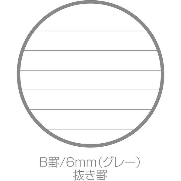 エトランジェ・ディ・コスタリカ B6リングノート[SOLID]モエギ SLD-27-13 10冊(直送品)