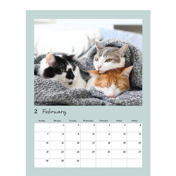 壁掛けカレンダー 双子猫 A3