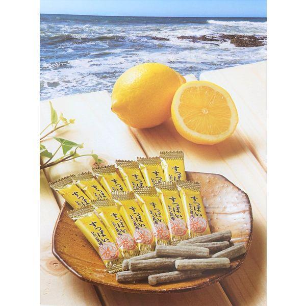 中山食品工業 すっぱいレモン昆布 4901826310600 1袋(直送品)