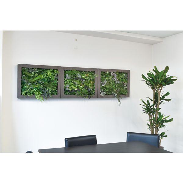 松村工芸 イージーデコフレーム 壁掛けインテリアグリーン L A-2 196-20011-2 1個(直送品)