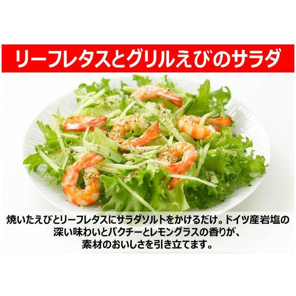 サラダソルトパクチー&レモングラス1個