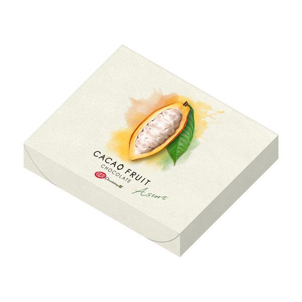 キットカットショコラトリーカカオ+紙袋