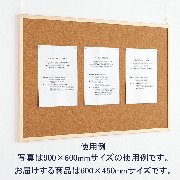 両面コルクボード 600×450mm