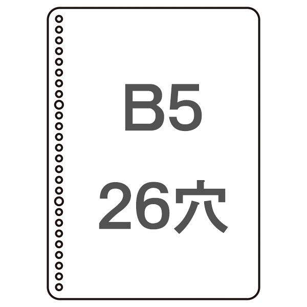 三色刷ルーズリーフB5 銀行勘定帳 3冊
