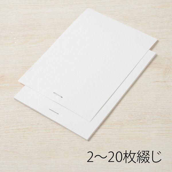 プラス ホッチキス針 100本つづり No.10 (直送品)