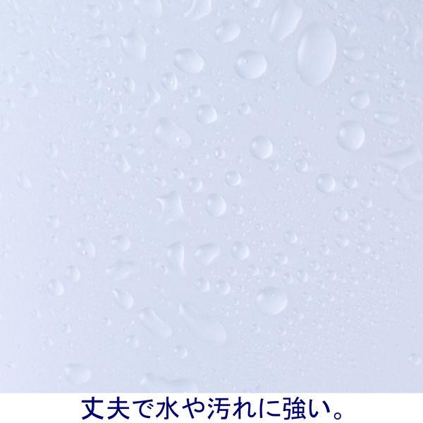 ボックスファイル組み立て式 A4タテ 10冊 PP製 クリア セリオ