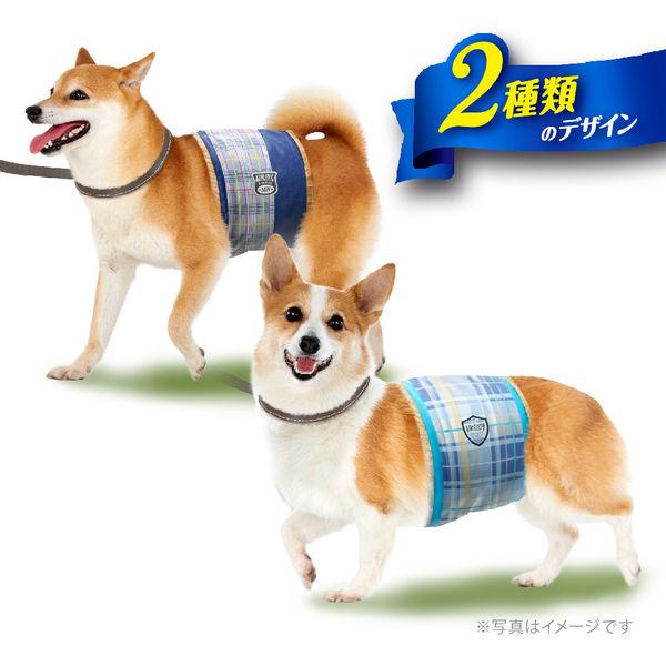 マナーウェア男の子用中型犬用40枚