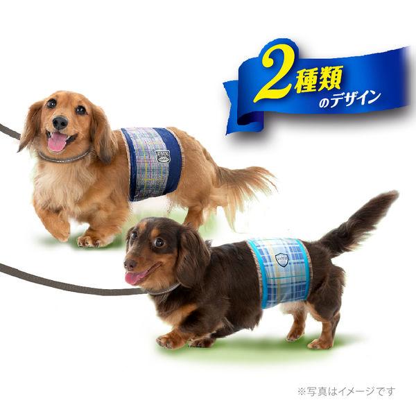 マナーウェア男の子用小型犬用46枚