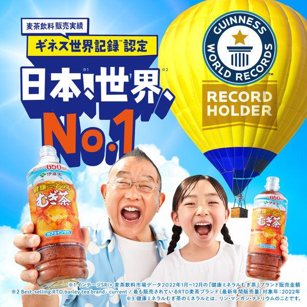 健康ミネラルむぎ茶 600ml 6本