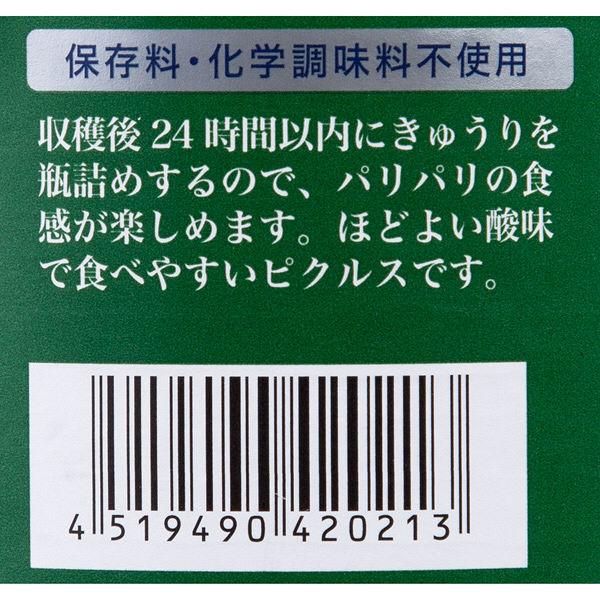 成城石井 〈成城石井 成城石井 オリジナル〉保存料 化学調味料不使用 コルニッションピクルス 1セット(2個)