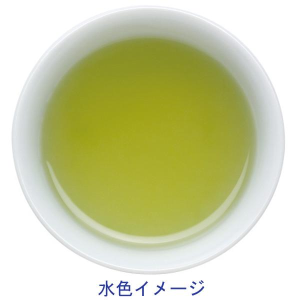 深蒸し緑茶ドリップタイプ(30バッグ入)