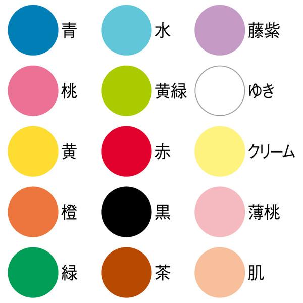 ハピラ 色画用紙 15色アソート B4 IG15B4 1セット(10冊)