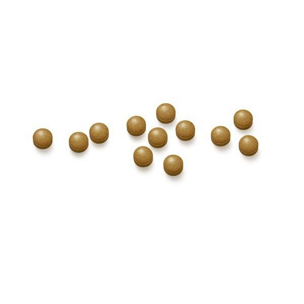 酵素にんにく卵黄 約30日分