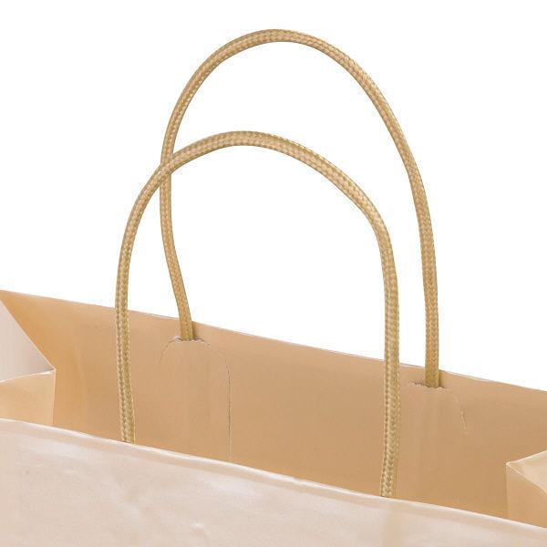 丸紐 手提げ紙袋 M 10枚