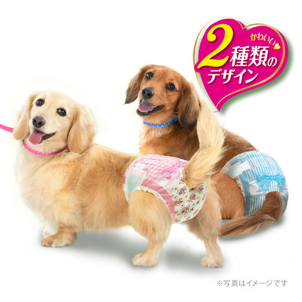 箱売マナーウェア女の子Sサイズ36枚×8