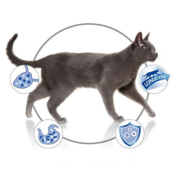 7歳以上の成猫用2.5kg