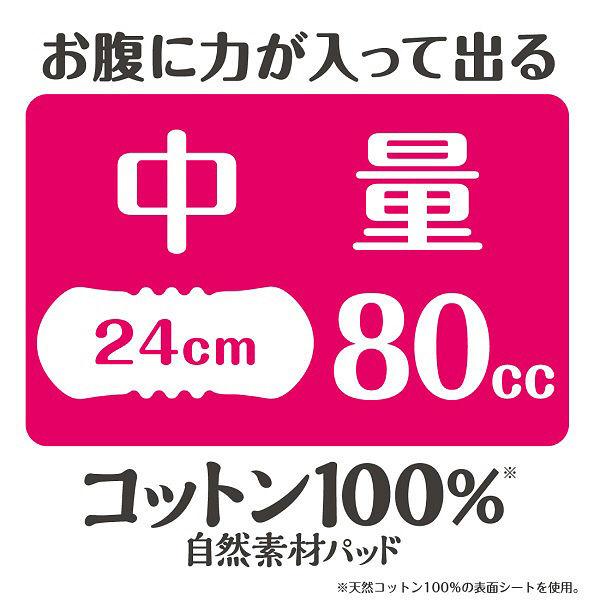 コットン100%パッド中量22枚×3