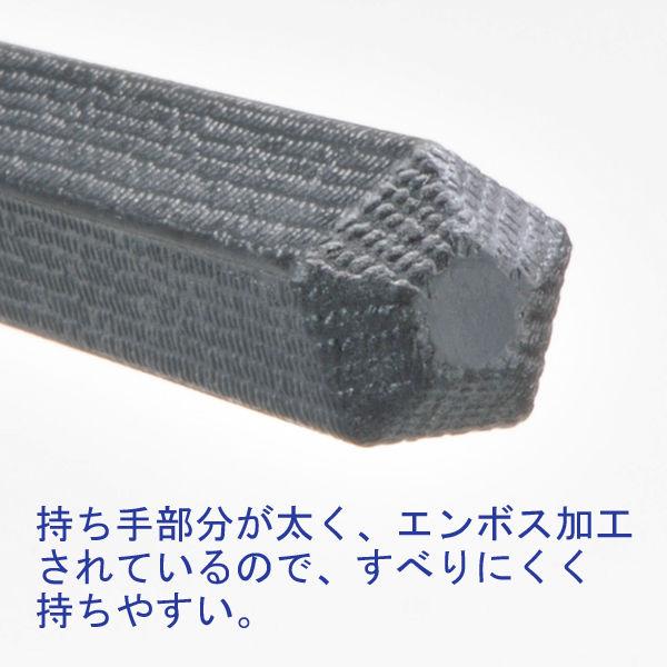 PPS五角樹脂箸 21cm 1袋10膳入