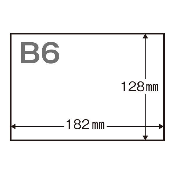 領収証 B6 1面/穴なし 白