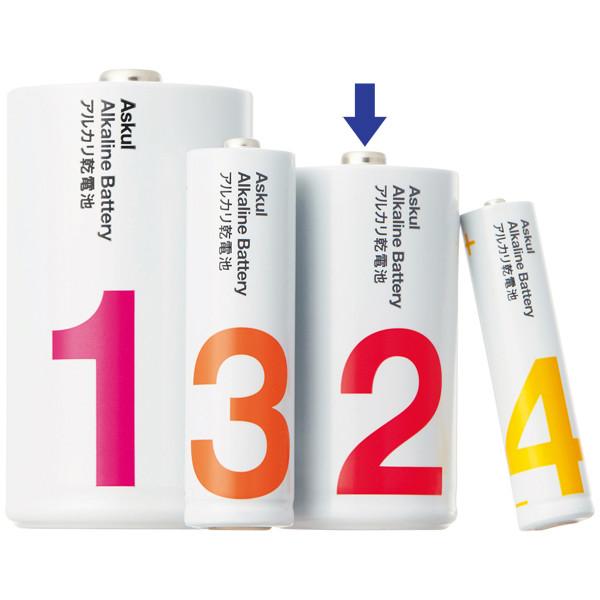 アスクル アルカリ乾電池 単2形100本
