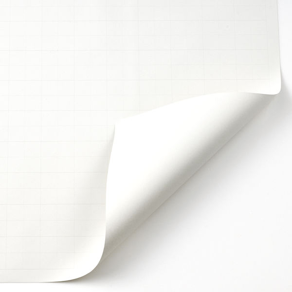 アピカ 方眼模造紙 プルタイプ 白 XP20W 1箱(20枚入)