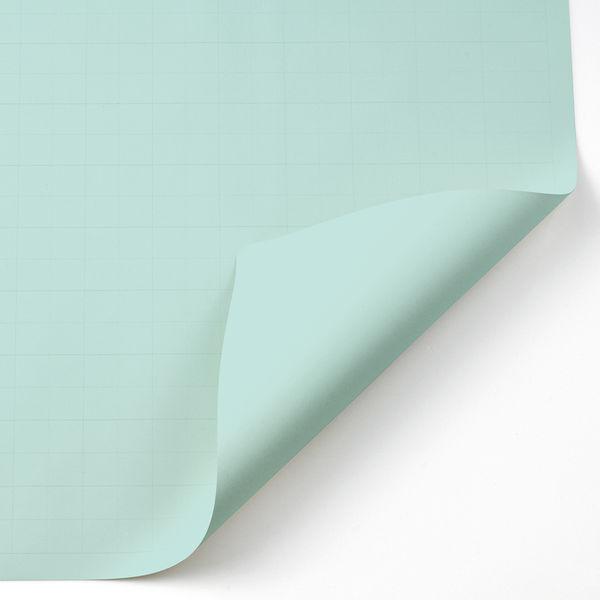 アピカ 方眼模造紙 プルタイプ ブルー(あさぎ) XP20B 1箱(20枚入)