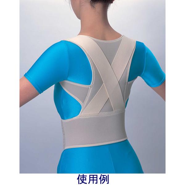 中山式脊椎医学キョウセイベルト ソフト M 030055 中山式産業 (取寄品)