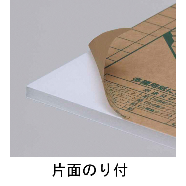 プラチナ万年筆 ハレパネ(R)ソラーズ B1判(1100×800mm) 厚さ5mm 10枚