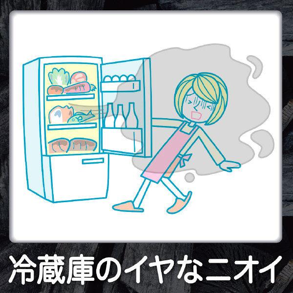 脱臭炭 冷凍室用 1個