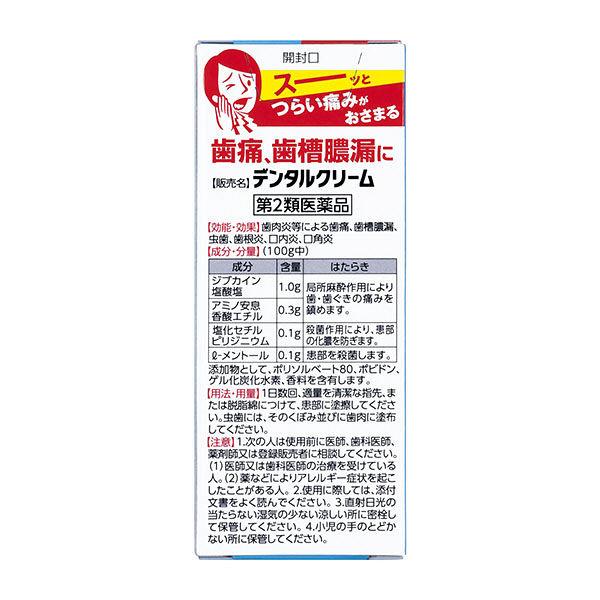 メディケア デンタルクリームT 4g