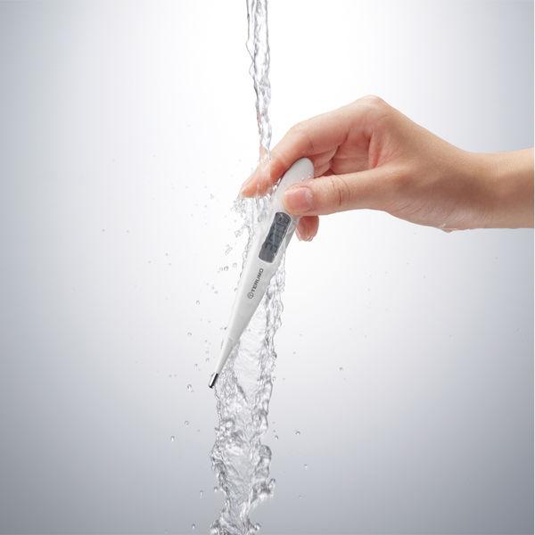 テルモ 電子体温計C205P