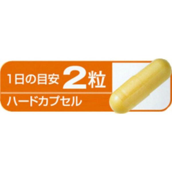 小林製薬コエンザイムリポ酸カルニチン