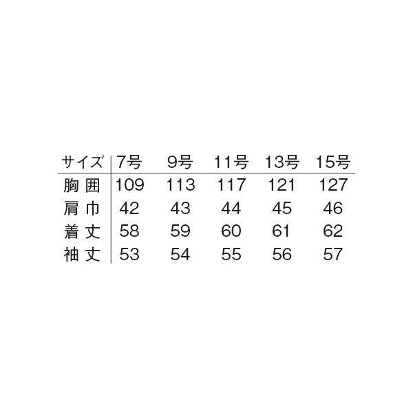 明石スクールユニフォームカンパニー レディースブルゾン ネイビー 17 UN1689-7-17 (直送品)