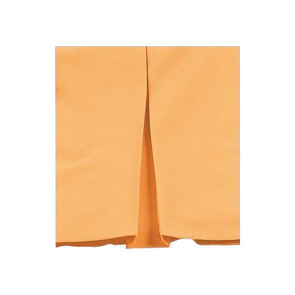 明石スクールユニフォームカンパニー レディース半袖ジャケット スカイブルー 13 UN1919-6-13 (直送品)