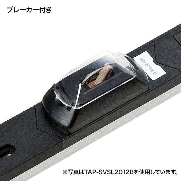 サンワサプライ 19インチサーバーラック用コンセント(30A) TAP-SVSL3024C (直送品)