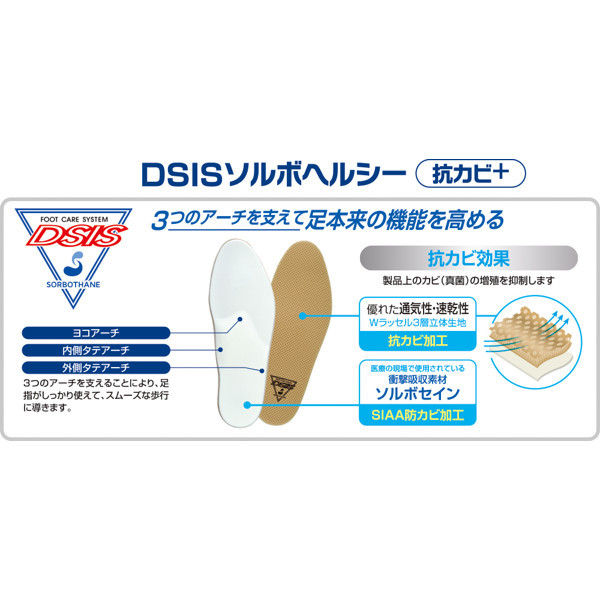 ソルボセイン DSISソルボヘルシー抗カビ+ L 61750 1足 (取寄品)