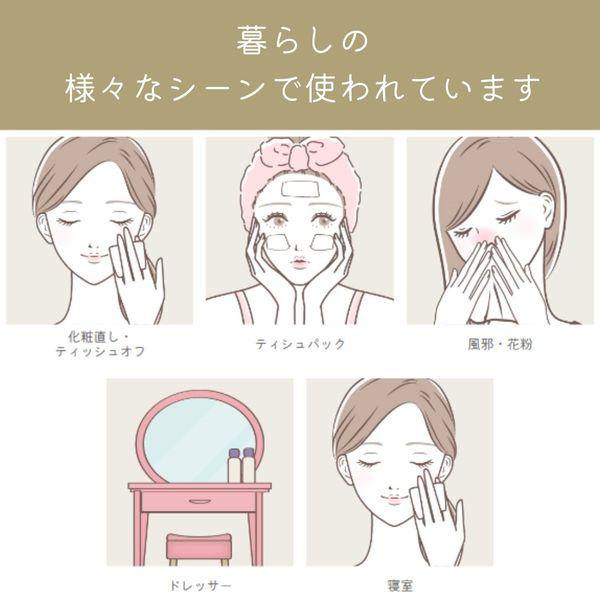 スコッティカシミヤ高品質 220組×3箱