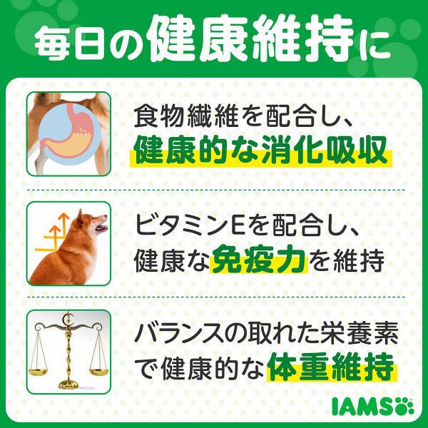 健康維持用 チキン 2.6kg 3袋