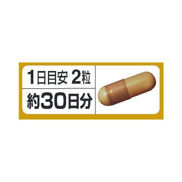 コエンザイムQ10トリプル 30日分