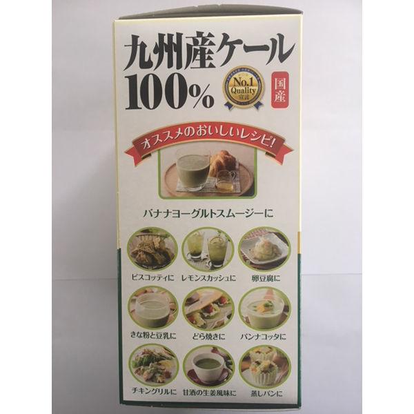 九州産ケール100%粉末 1箱