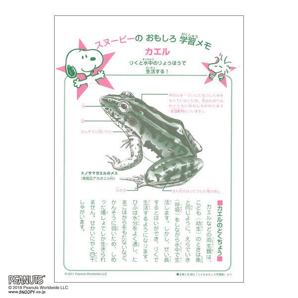 スヌーピー学習帳 国語15マス セミB5